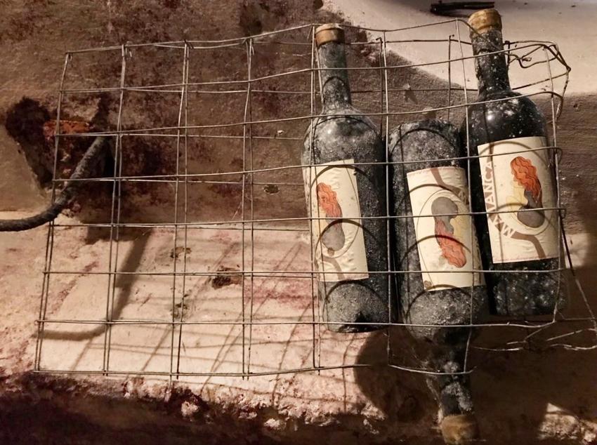 Bottiglie di Tuccanese nella cantina studio Guidacci