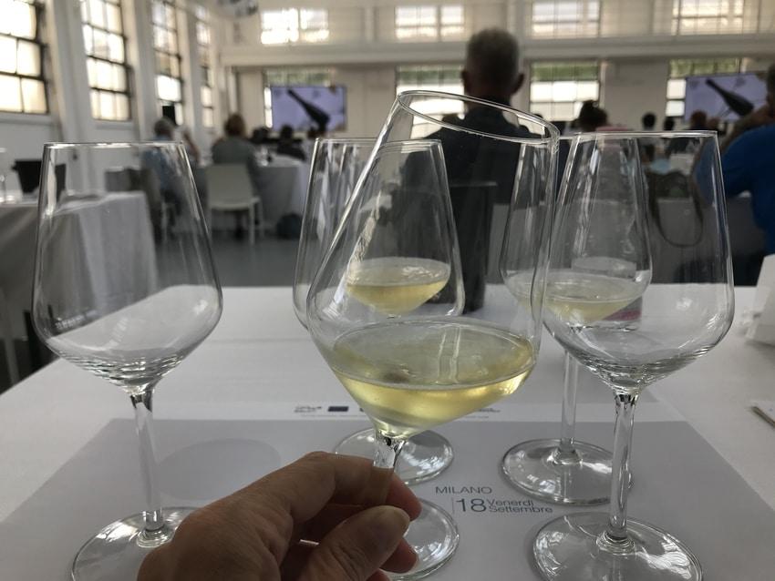 Bicchieri per degustazione Lugana
